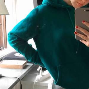 en mörkgrön ish hoodie från carlings, urpsrungspris var 399 men säljer för 250kr inkl frakt, storlek S men väldigt oversize