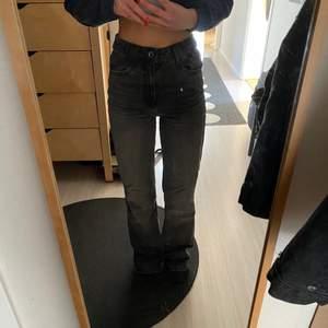 Snygga gråa zara jeans! Slitna längst ner (bild 3)