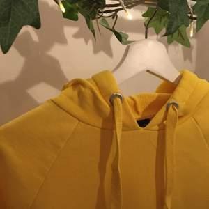 Gul hoodie från bikbok i storlek xxs men sitter som en xs/s