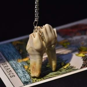 Ett maffigt halsband med silvrig kedja och en tand (blekt och rengjord) från älg!