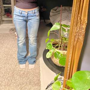 Lågmidjade diesel jeans, jättefint skick. Stolek W28 L32 jag är ungefär 160 och tycker dom är bra längd. Kostar 1400 nya. Buda i kommentarerna eller privat. Dom är mer i färgen på den sista bilden (inte lika ljusa som på första) 🌟