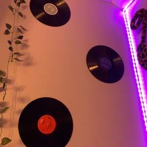 Säljer 4 st skivor! Man kan hänga upp dem på väggen som jag gjort! 40kr/st