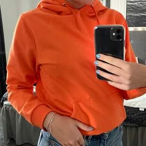 Snygg orange hoodie från stay. Väldigt bra skick🧡