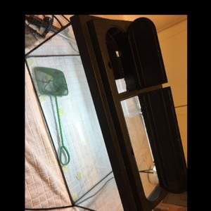 """Akvarium i nyskick Längd 60cm Höjd 30cm + locket några cm Bredd/djup 30cm  Tillbehör:  Litet """"miniakvarium"""" man kan sätta i t.ex. fiskyngel så dom inte blir uppätna eller fiskar som bråkar.  Grön hov Pump med filter  Möts upp i Enköping eller närheten"""