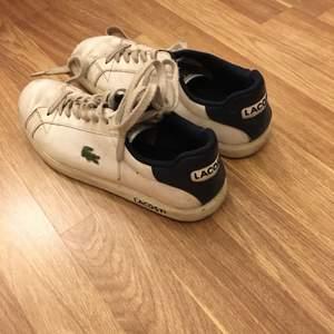 Lacost skor väk använda