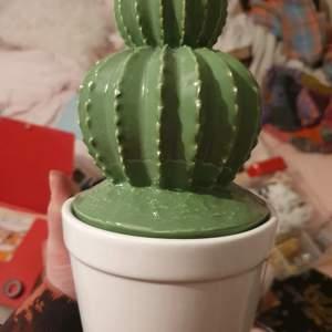 Porslin kaktus med gömd låda, runt 25-30 cm hög och runt 10-15 cm bred. Frakt kostar 66kr och skickar säkert inslaget så den inte går sönder♡