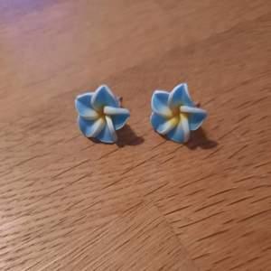 Örhängen med blå skulpterade blommor.