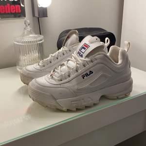 Fila skor i strl 39:) dom är använda väldigt få gånger men fint täcken på användning