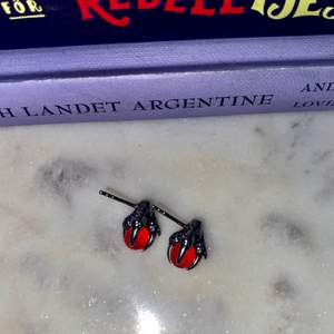 Clawörhängen med sten! Ser ut som Maria Nilsdotter men köpte på någon affär i Berlin