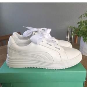 Sötaste & coolaste sneakers 🎂 Oanvända 🎂 Extra snören tillkommer 🎂