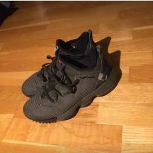 Nike air lebron low  Bra skick