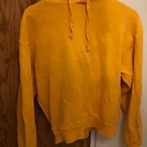 Orange hoodie från na-kd. Modellen heter basic hoodie tror jag om ni vill kolla på hur den sitter på och så!