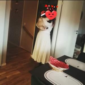 Jättefin vit kjol från asos som passar bra nu till julen ! Använt en gång då den är för liten